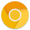 Chrome Canary Unstable 93045340 Free APK Download - Chrome Canary (Unstable) 93.0.4534.0 Free APK Download apk icon